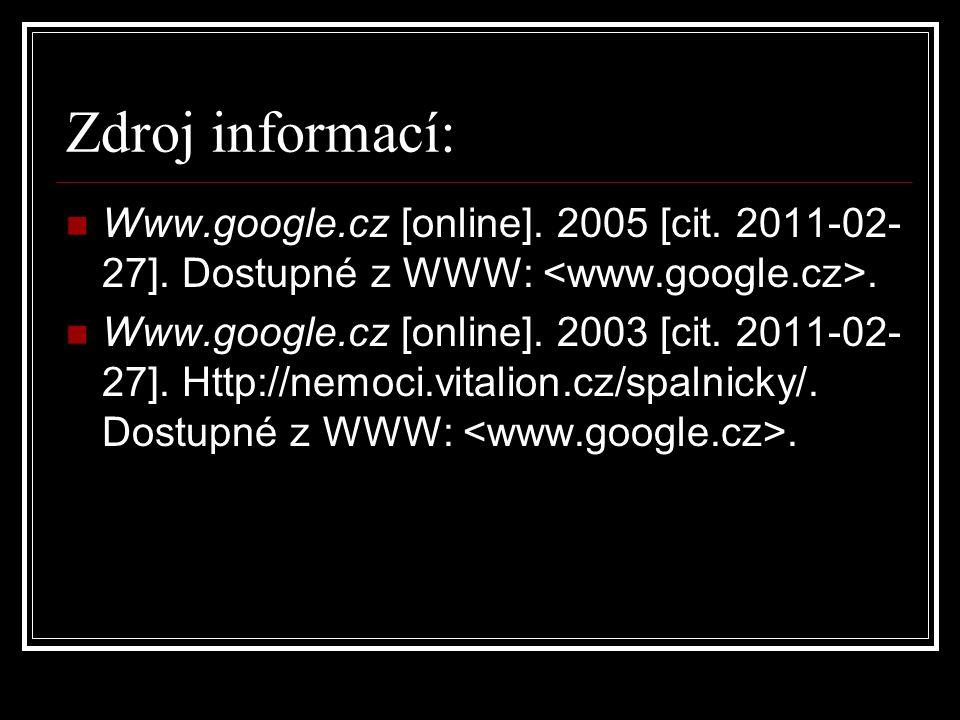Zdroj informací: Www.google.cz [online]. 2005 [cit. 2011-02-27]. Dostupné z WWW: <www.google.cz>.